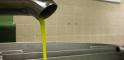 L'olio novello isolano in lavorazione presso il frantoio comunale